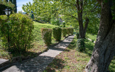 basaletto-agriturismo-assisi-11