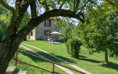 basaletto-agriturismo-assisi-14